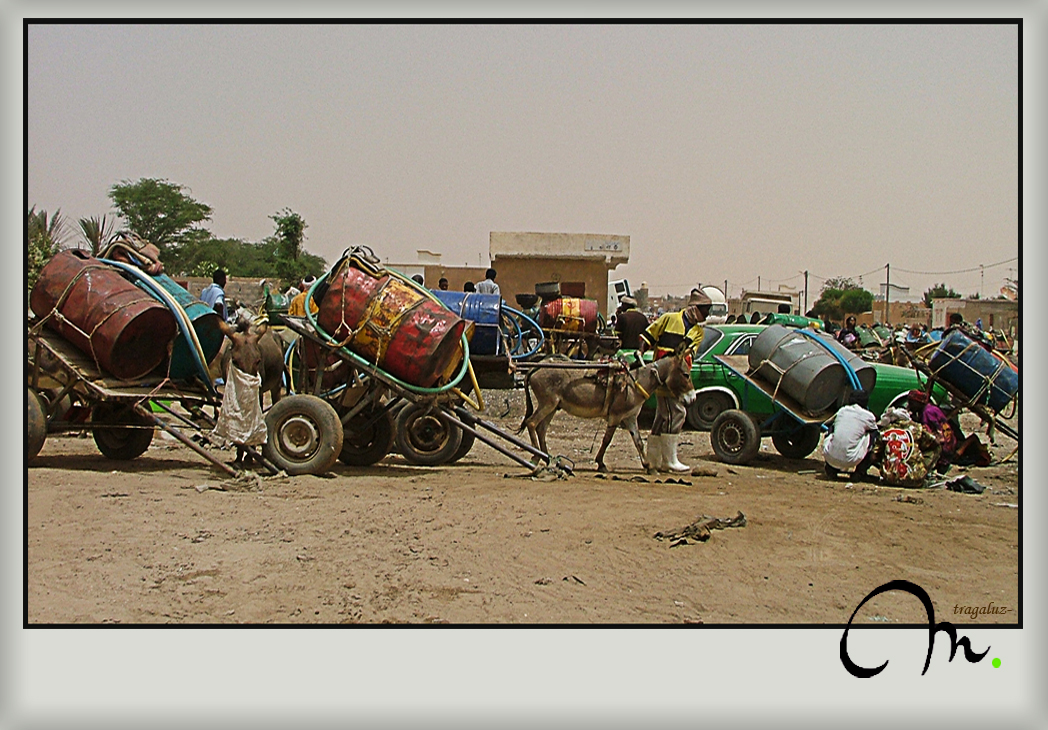 Los aguadores de Nouakchott - Mauritania
