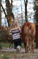 Los lass uns Pferde stehlen gehen.......