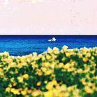 Los mares del sur / 3