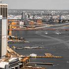 LOS TONOS OCRE DE NEW YORK V