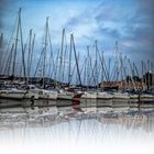 Los veleros en Vrsar