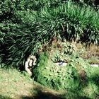 Lost Garden of Heligans, Cornwall