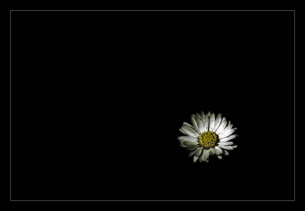 Lost in black...