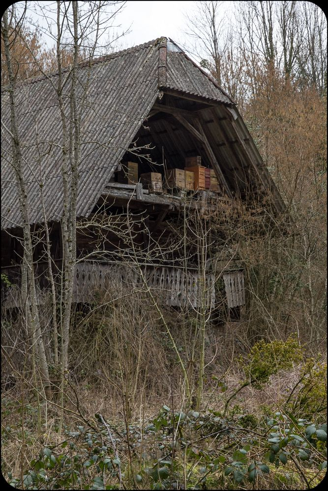 Lost Places Schwarzwald