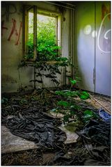 Lost place - Nature returns back