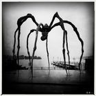 . Louise Bourgeois. Zuerich.