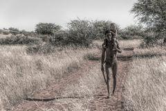 lovely africa 6