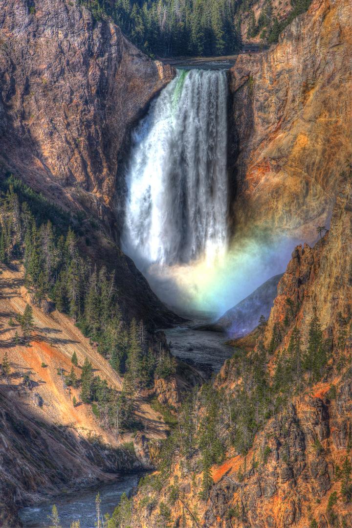 Lower Falls @ Yellowstone