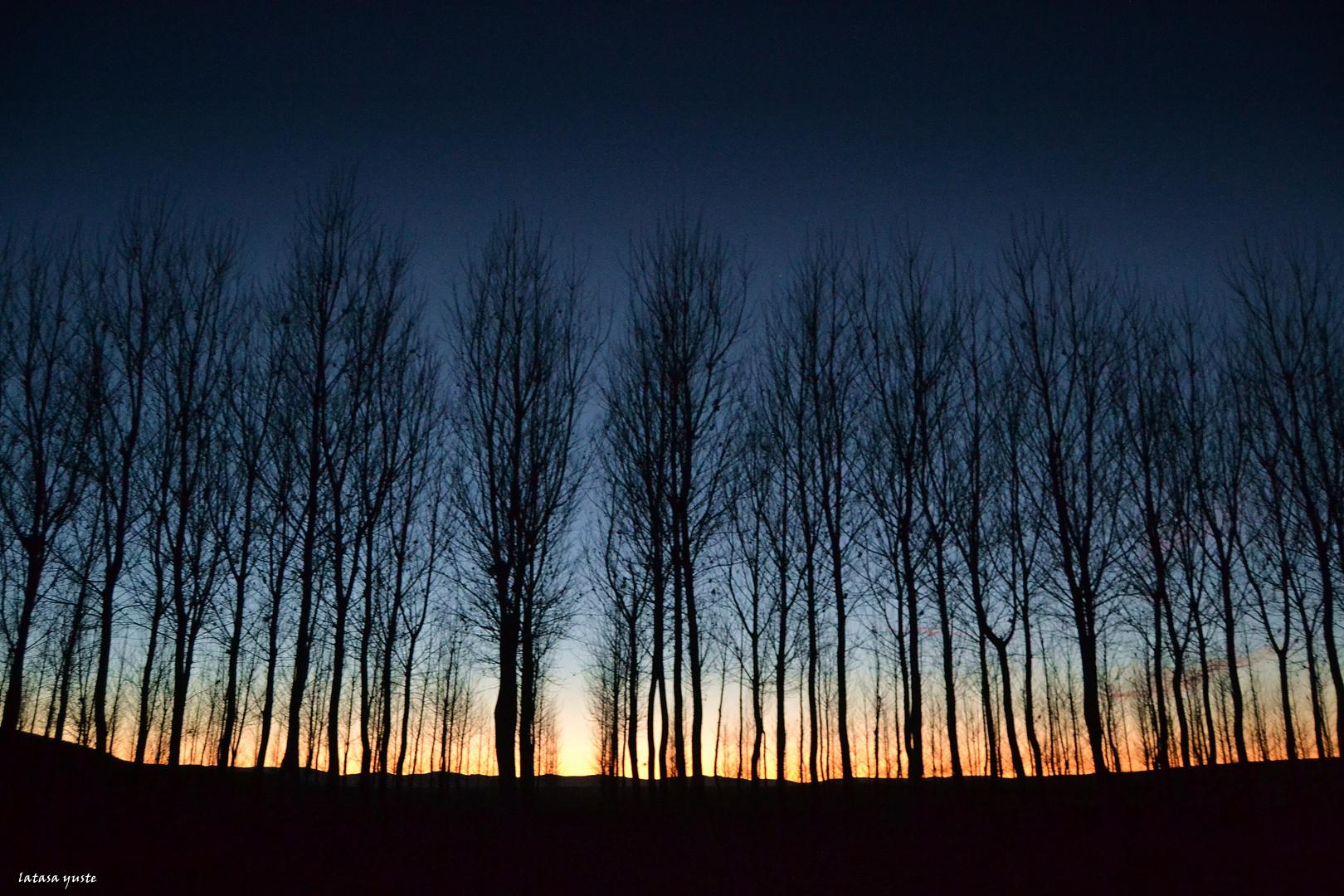 Últimos rayos de invierno