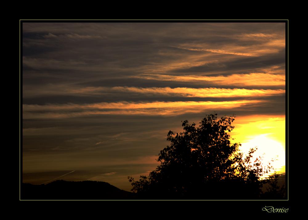 luca di tramonto