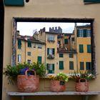 Lucca si specchia