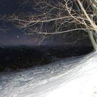 Lucciole sulla neve