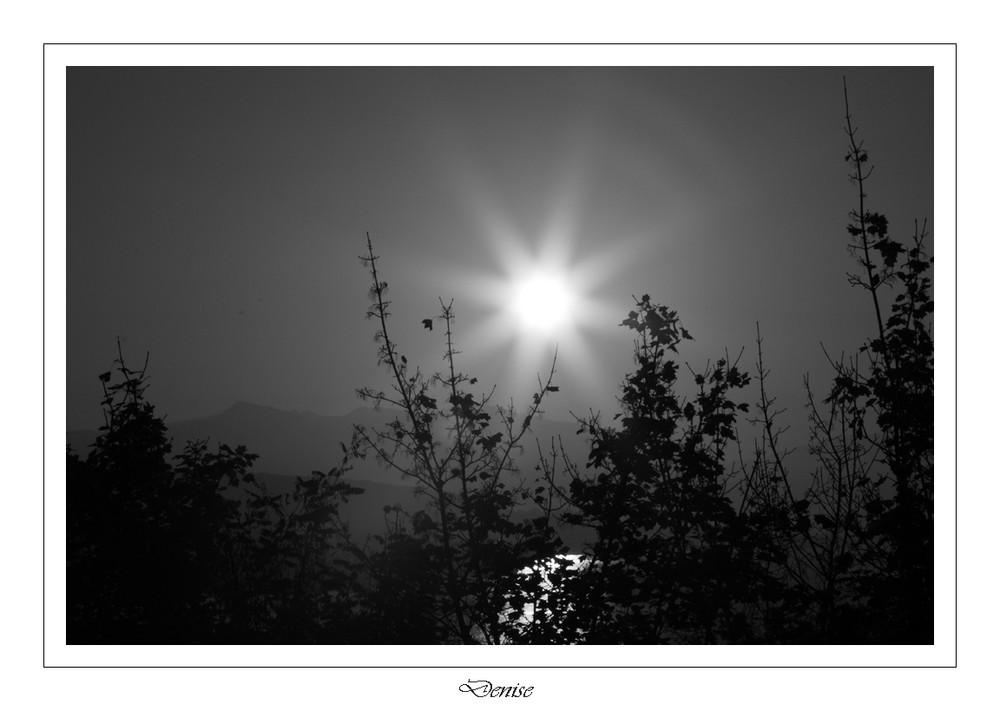 luce d'alba