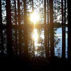 Luce sul lago