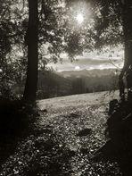 Luces de otoño