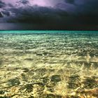 Luci sul mare