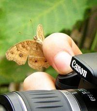 LuckyPhoto
