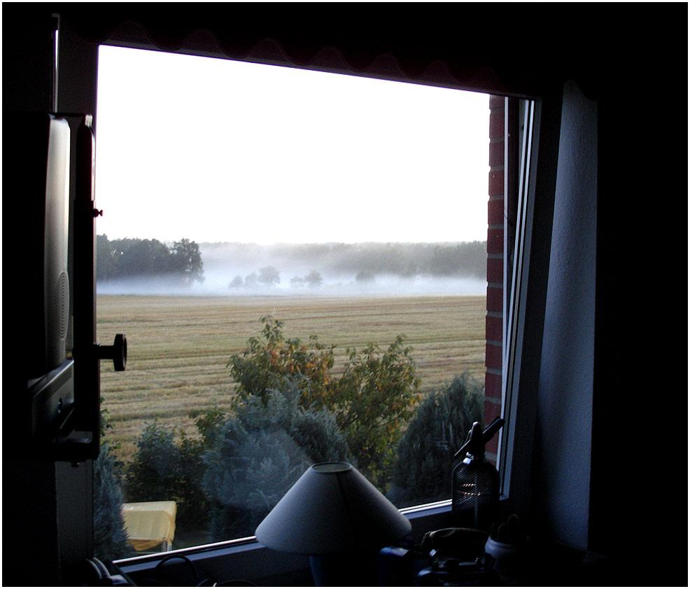 Lüneburger Heide 5 Uhr morgens.......