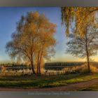 lueurs d'automne sur l'étang du Stock