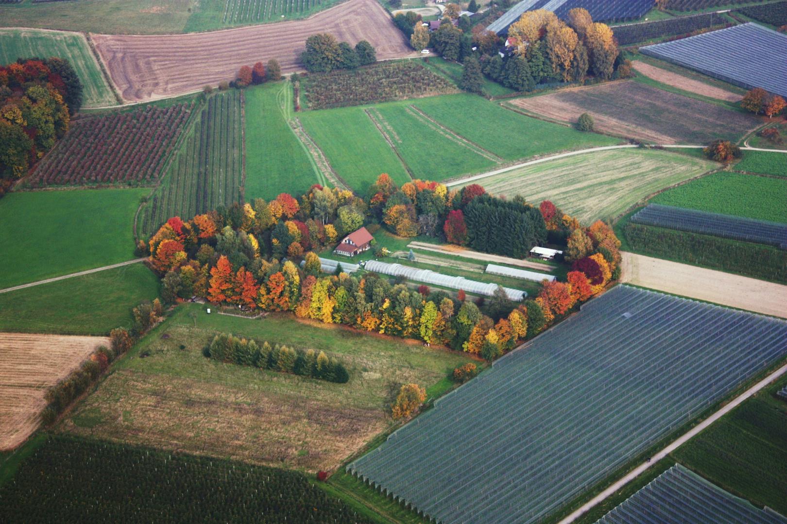 Luftbild Gärtnerei Bei Friedrichshafen Foto Bild Jahreszeiten
