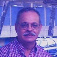 Luis Javier Dominguez Plessmann