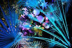 Luminale - Palmengarten 1