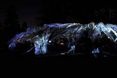 Luminale - Palmengarten - Datura