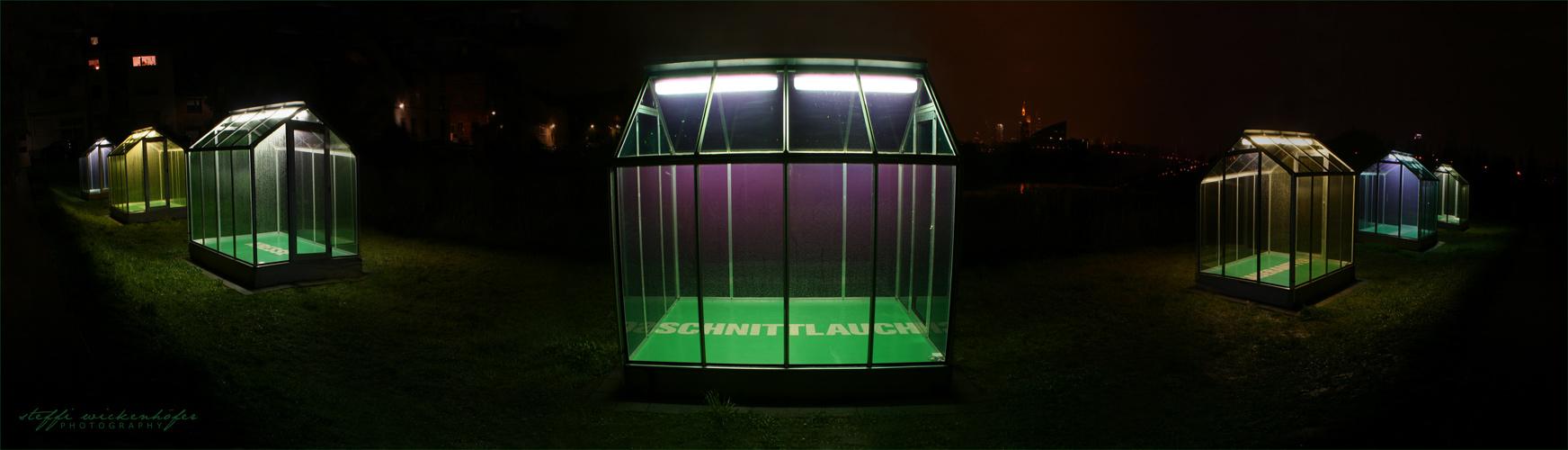 .Luminale08_Grüne Soße im Regen.