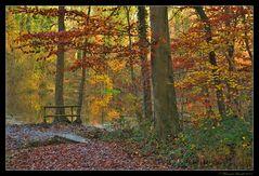 Luminances des ocres d'automne