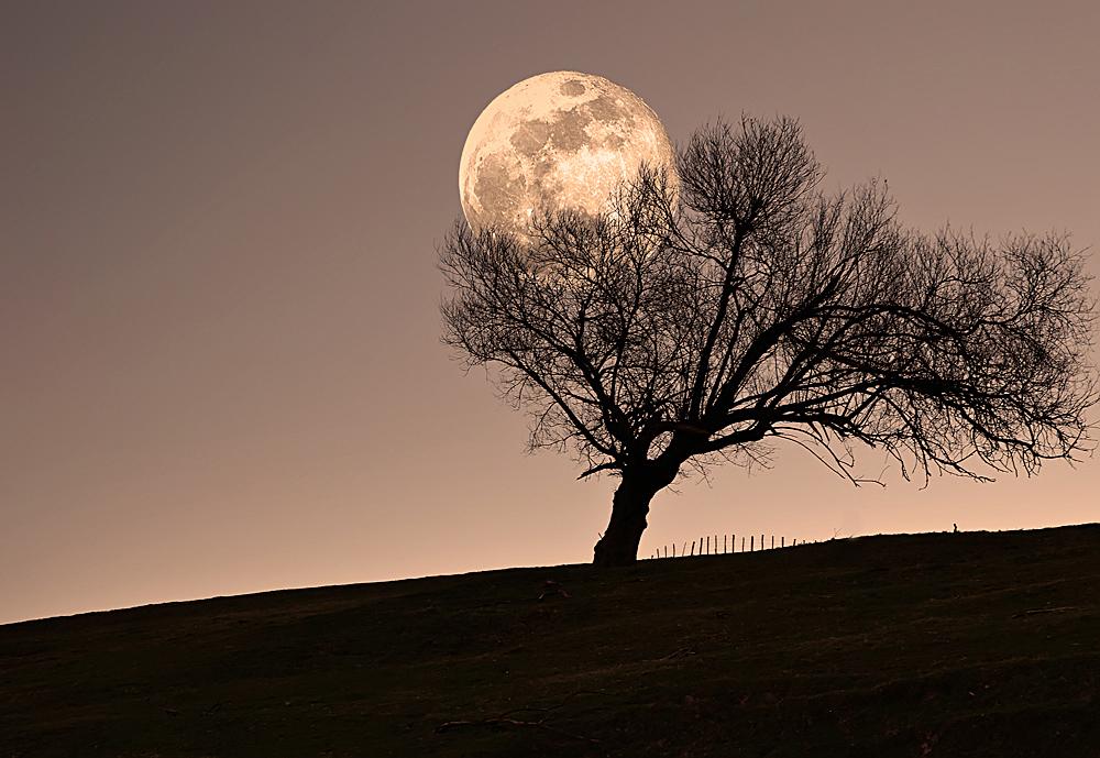 Luna de Marzo