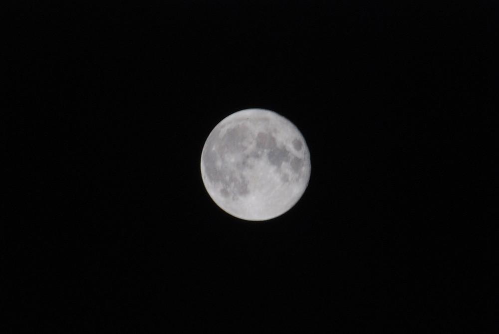 Luna d'Inverno