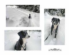 LUNA im Schnee