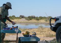 Lunchhour im Chobe