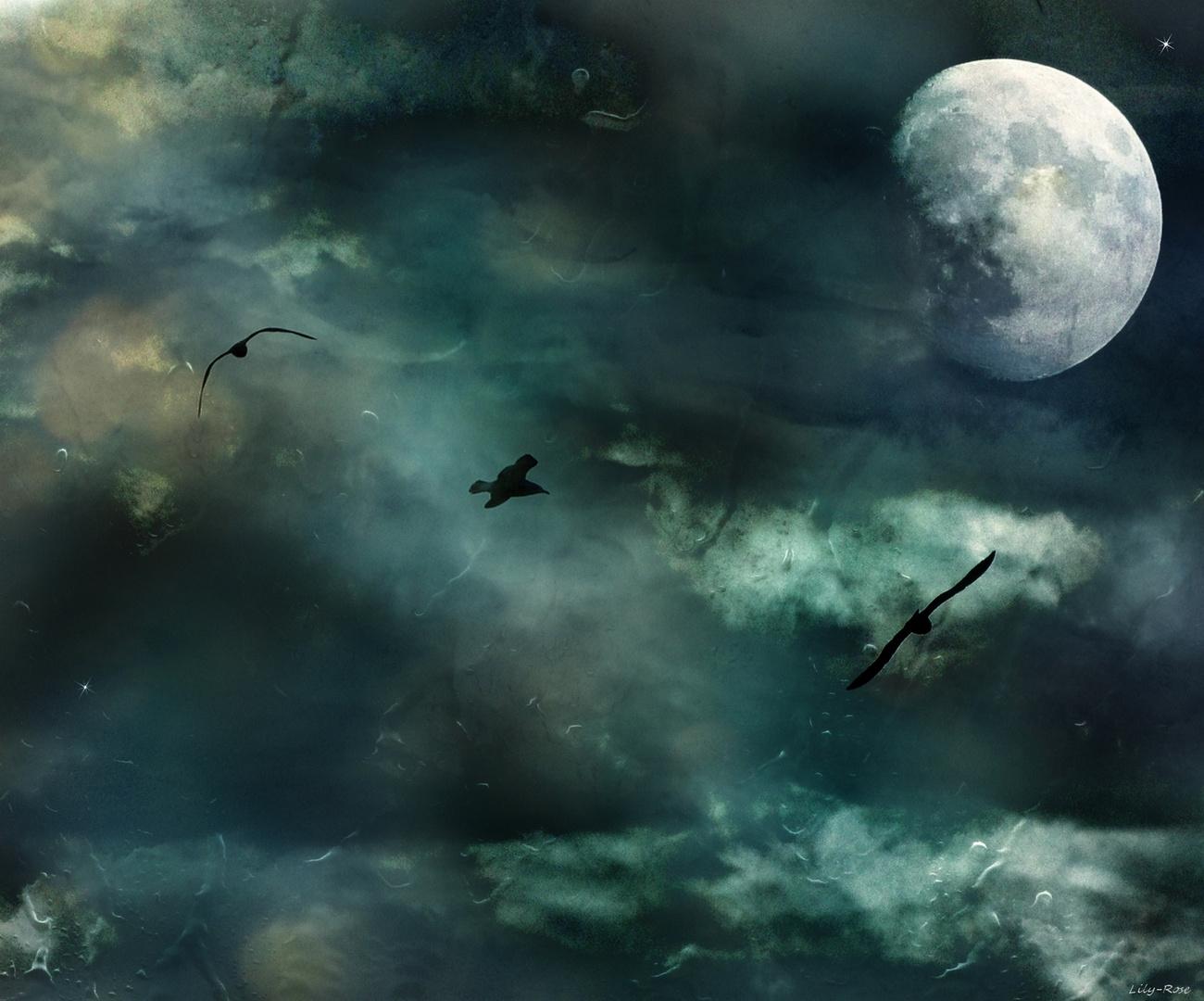 ... Lune Hiver ...
