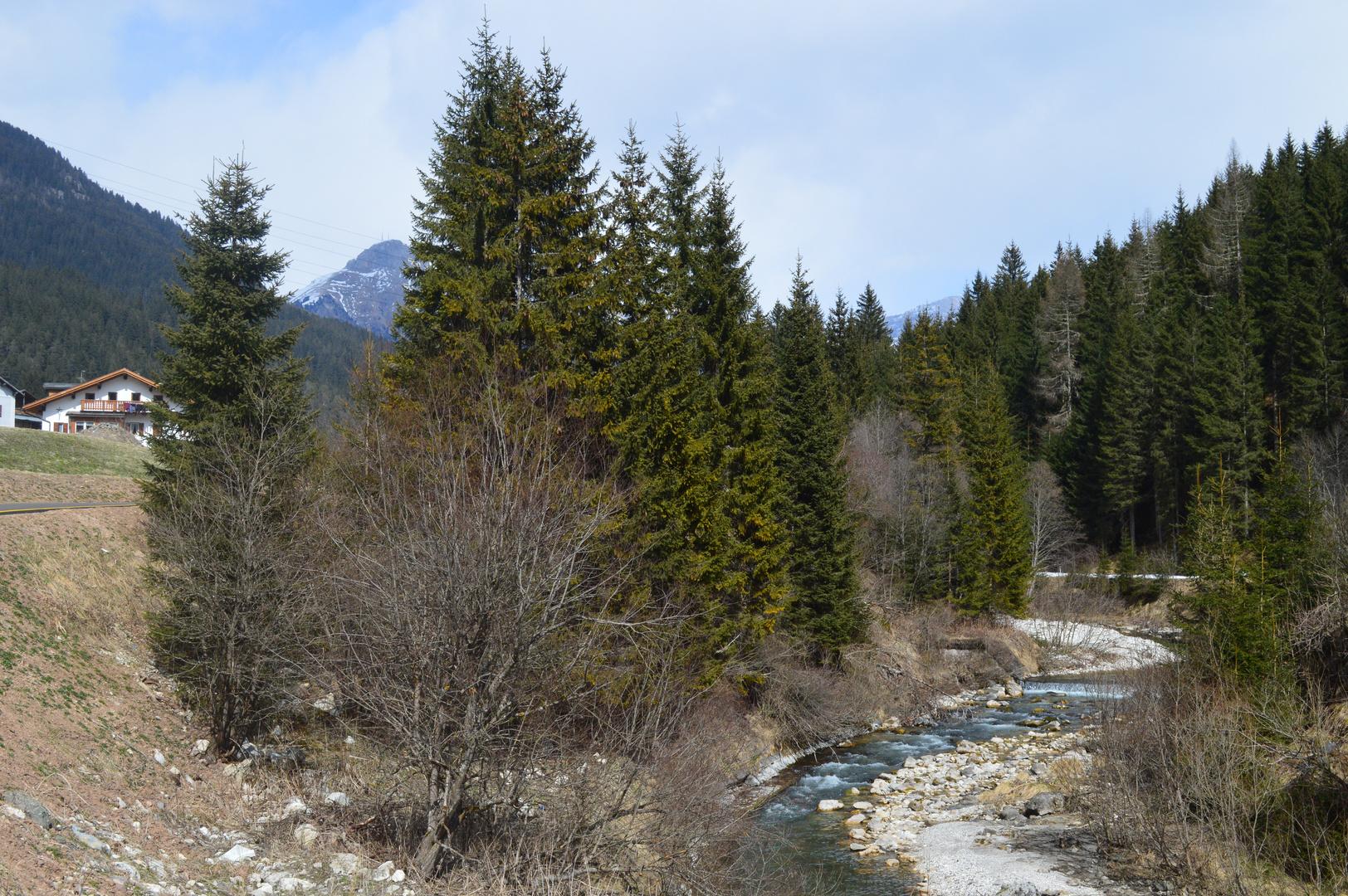 Lungo il fiume (2)