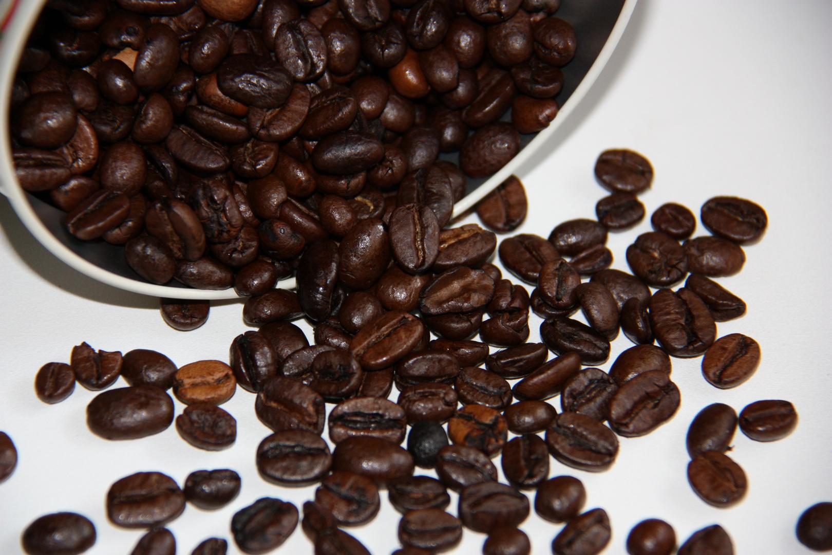 Lust auf nen Kaffee?