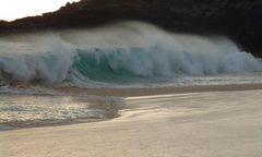 Lust auf Wellenreiten?