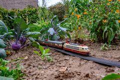 Lustige Garten Bahn :-D