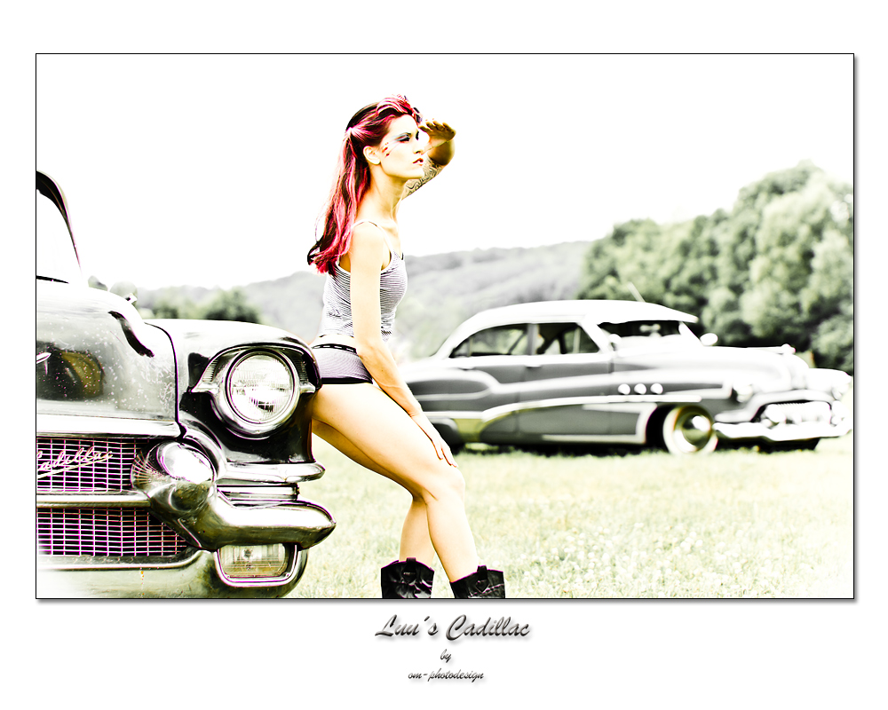 Luu´s Cadillac - Looking forward...