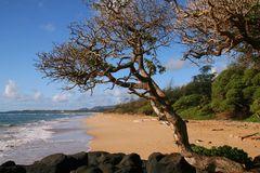 Lydgate Beach Park auf Kauai