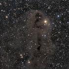 Lynds Dark Nebula 1251 im Sternbild Cepheus