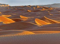 Lyrische Wüste