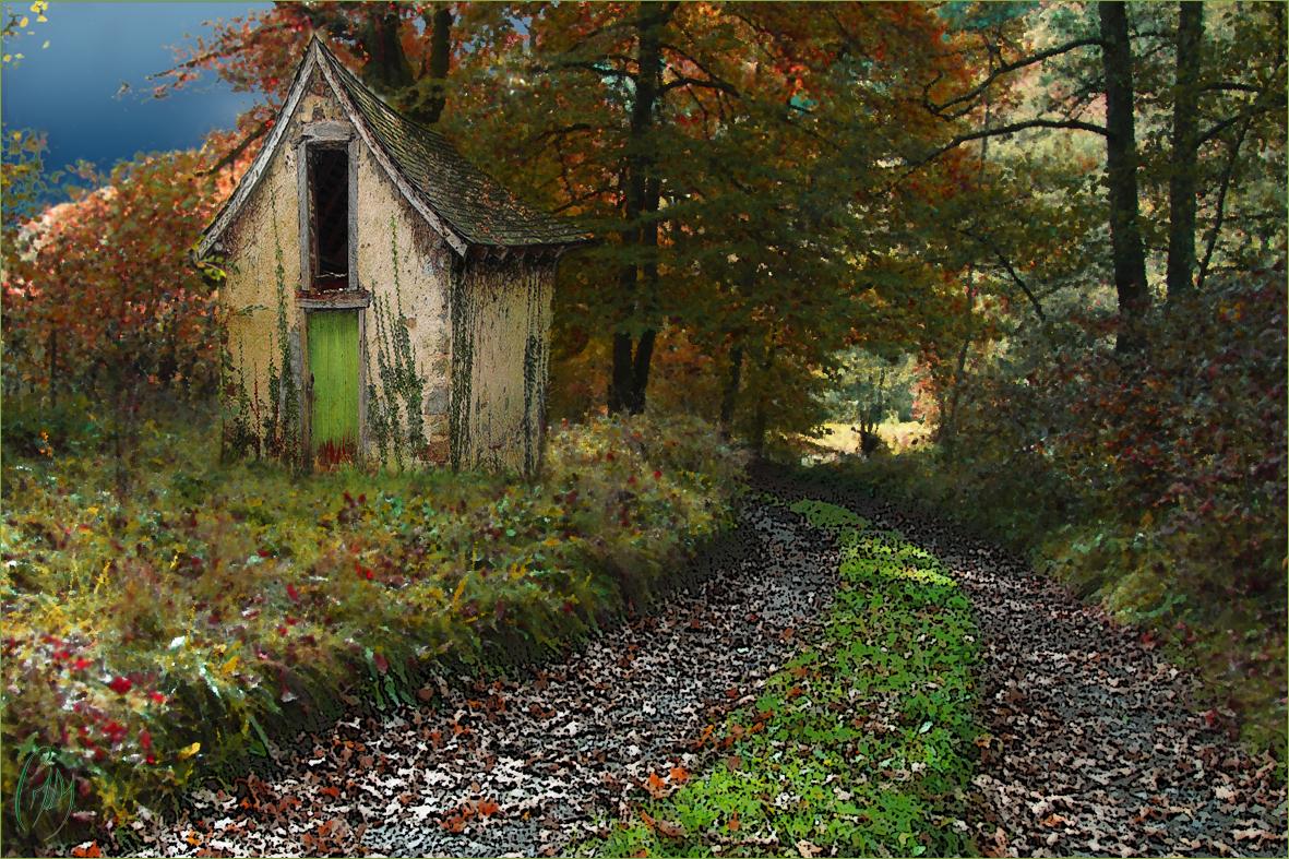 Ma cabane au Canada !...dry !..