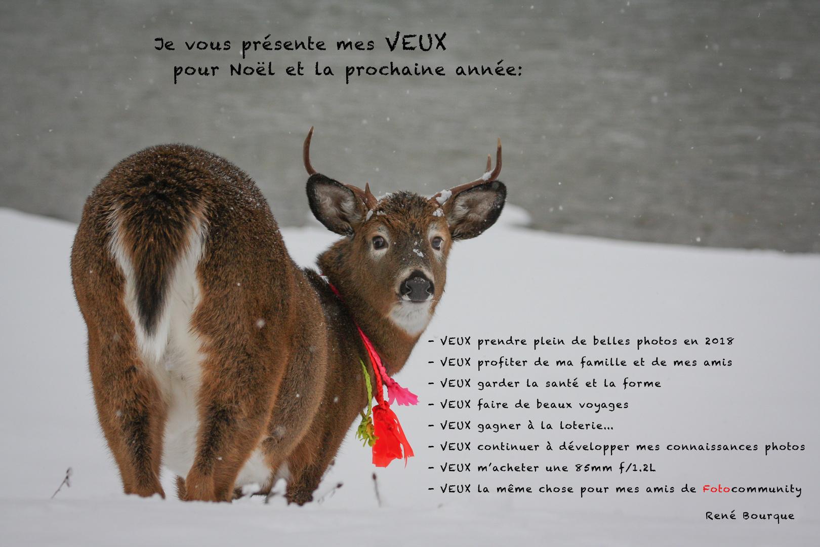 Ma Carte De Noel.Ma Carte De Noël 2018 Photo Et Image Cartes De Voeux