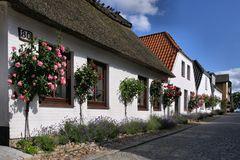 Maasholm an der Schlei (4)