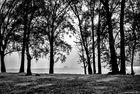 Maccagno, Parco Giona