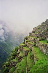 Machu Picchu Terassen