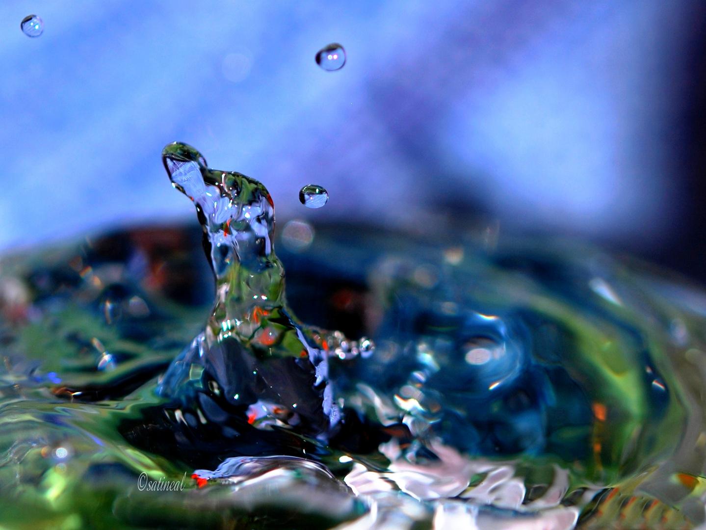 Madame Lapin'eau