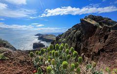 Madeira (27)