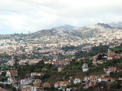 Madeira 29